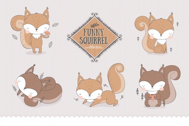 Personagens dos desenhos animados da floresta coleção de esquilos bebês em poses diferentes.