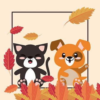 Personagens fofinhos de mascotes de gatos e cães