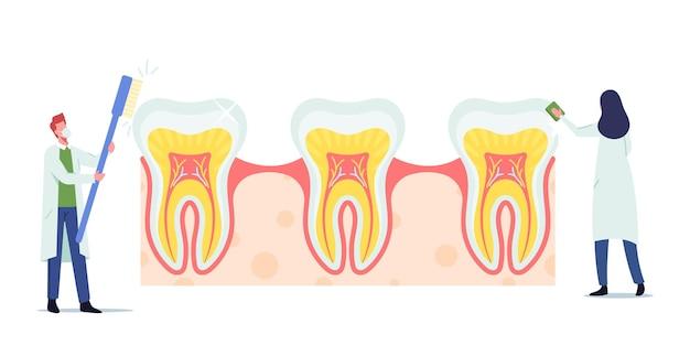 Personagens minúsculos de dentistas verificando dentes enormes em busca de cárie na placa