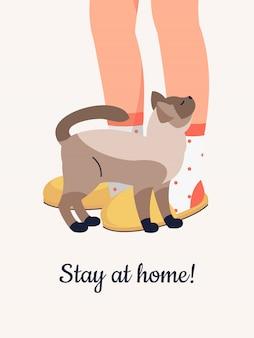 Pés humanos de vetor em chinelos confortáveis e gato siamês.