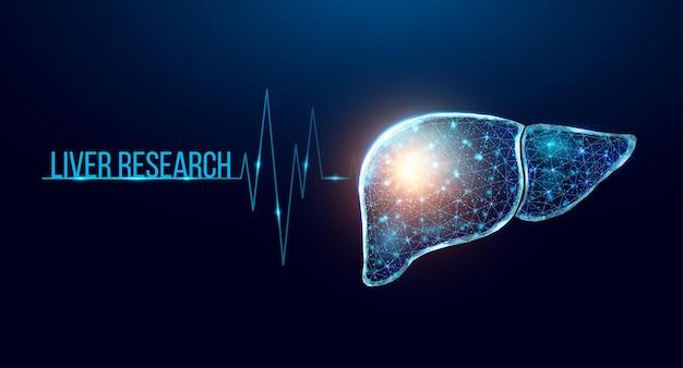 Pesquisa de fígado humano. estilo wireframe low poly. conceito de medicina, farmacologia, tratamento da hepatite. ilustração em vetor 3d moderna abstrata em fundo azul escuro.