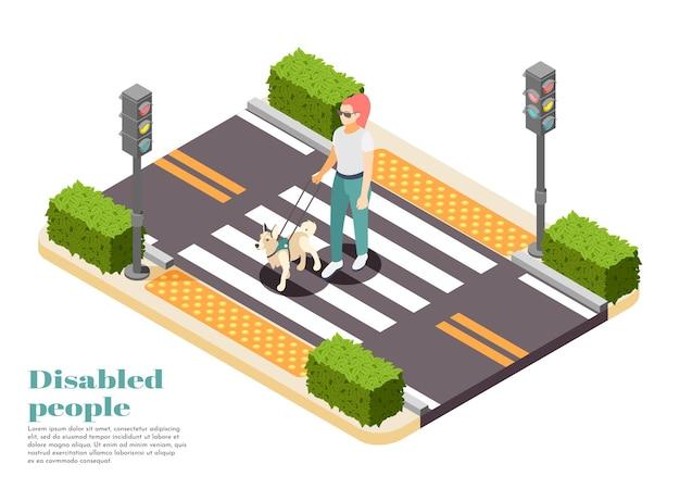 Pessoas com deficiência isométrica com guia de cães levando uma mulher cega para o outro lado da estrada.