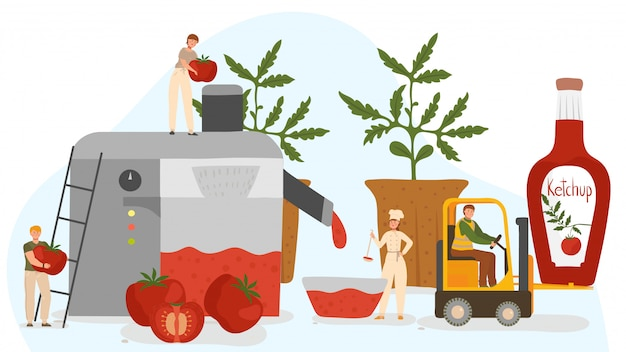 Pessoas fazendo ketchup de tomates frescos, ilustração