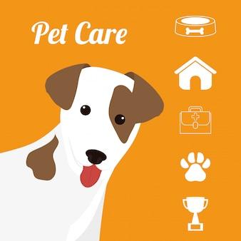 Pet design ilustração