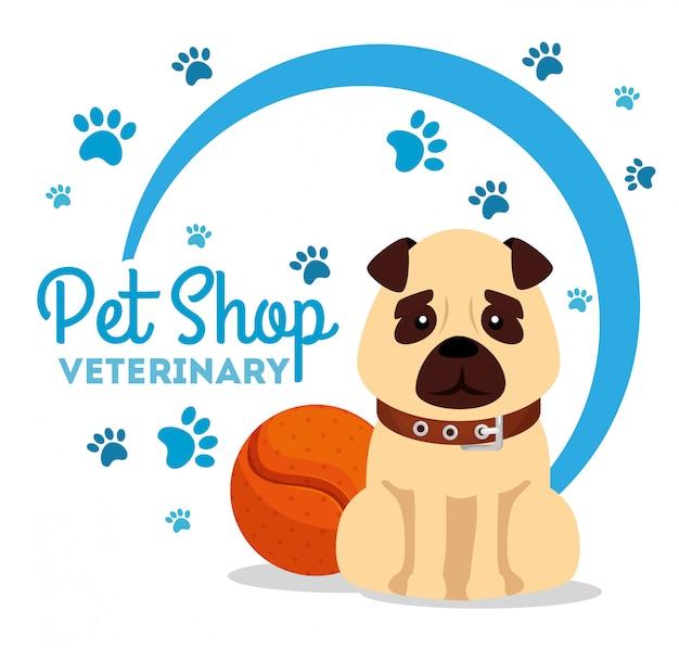 Pet shop veterinário com cachorro e bola