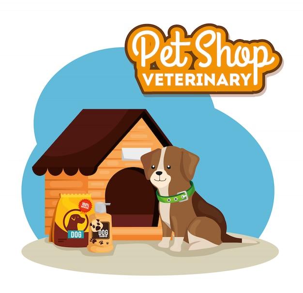 Pet shop veterinário com cachorro e