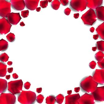 Pétala de flor rosa vermelha, fundo de quadro romântico