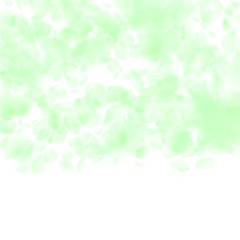 Pétalas de flores verdes caindo. impressionante gradiente de flores românticas. pétala voando sobre fundo quadrado branco. amor, conceito de romance. convite de casamento encantador.