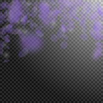 Pétalas de flores violetas caindo. poderosas flores românticas caindo chuva. pétala voadora sobre fundo quadrado transparente. amor, conceito de romance. convite de casamento autêntico.