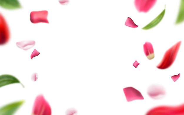 Pétalas de rosa turva e fundo de folhas.