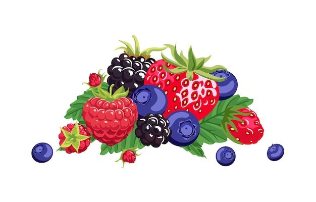 Pilha de diferentes desenhos de frutas silvestres