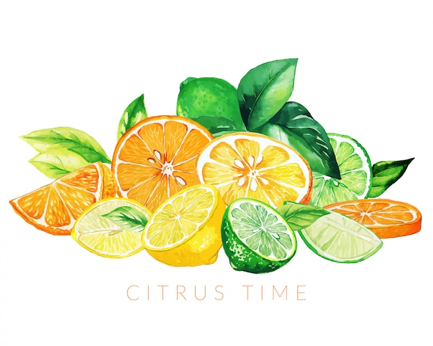 Pilha de frutas mistas, mão ilustrações desenhadas em aquarela