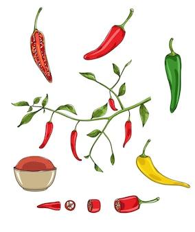 Pimenta malagueta vector conjunto ilustração