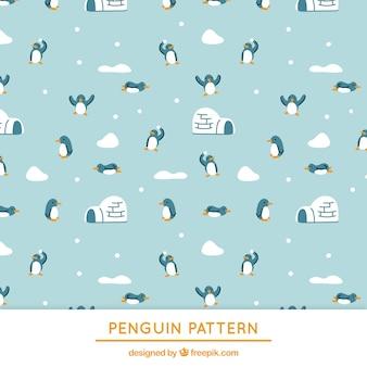 Pinguins azuis e padrão iglu