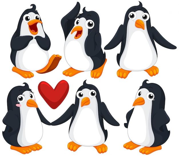 Pinguins bonitos em diferentes poses ilustração