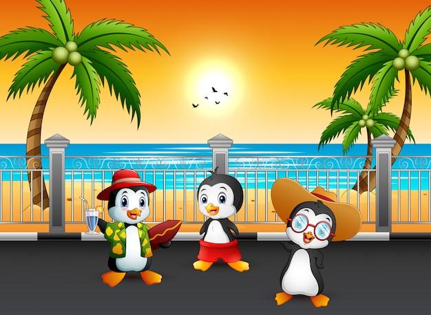 Pinguins de férias de verão na rua à beira-mar