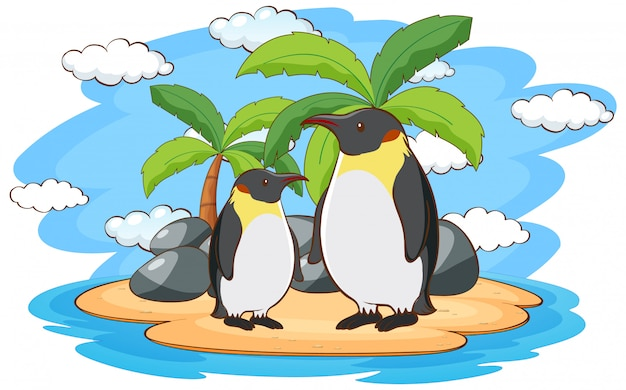 Pinguins em pé na ilha
