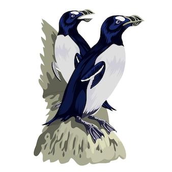 Pinguins engraçados em diferentes poses de ação. os mascotes dos desenhos animados isolam-se. casal pinguim pássaro animal.
