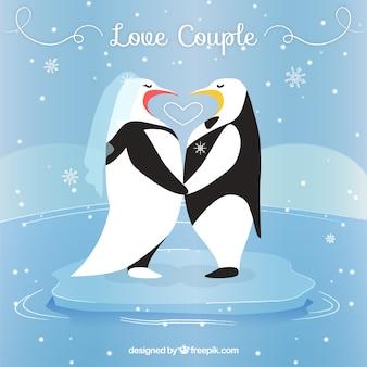 Pinguins no amor