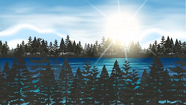 Pinhal no lago