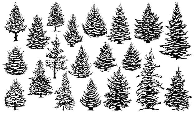 Pinheiros nevados de natal pinheiros cobertos de neve de natal silhuetas madeira de coníferas perenes