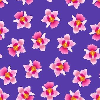 Pink vanda miss joaquim orchid em fundo violeta roxo