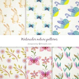 Pintados à mão animais bonitos e padrões de flores