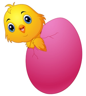 Pintinho dos desenhos animados para incubação de um ovo