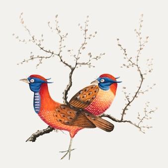 Pintura chinesa, caracterizando, dois, faisão-como, pássaros