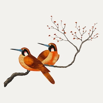 Pintura chinesa com dois pássaros