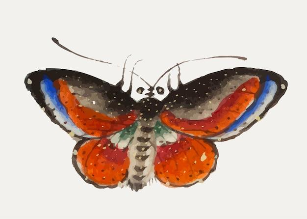 Pintura chinesa uma borboleta colorida.