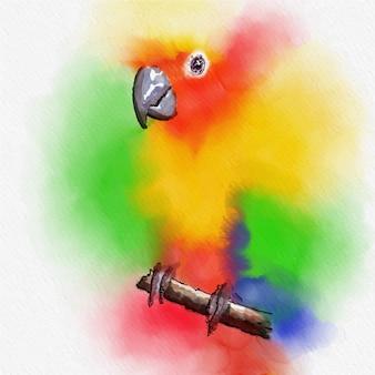 Pintura colorida da aguarela do pássaro na arte do vetor.