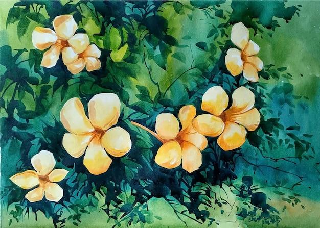 Pintura em aquarela de flores desenhadas à mão.