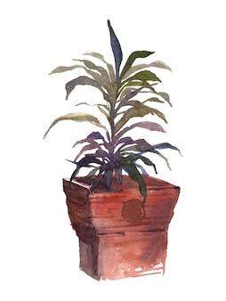 Pintura em aquarela de vaso de solo em vaso com árvore interna
