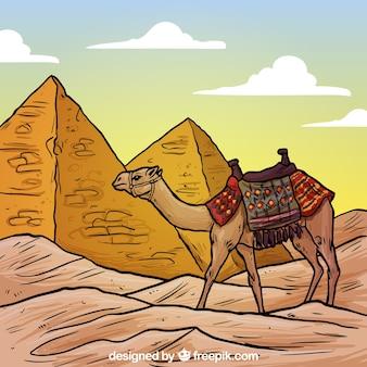 Pirâmides egípcias e uma ilustração do camelo