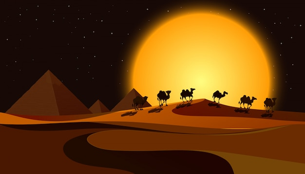 Pirâmides em cena noturna