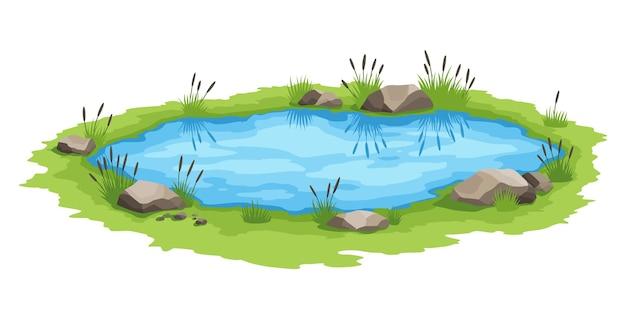 Pitoresca lagoa natural. conceito de lago aberto pequeno pântano. lagoa de água com juncos. interior