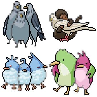 Pixel art conjunto pássaro isolado amigo