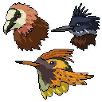 Pixel art de cabeça de pássaro selvagem