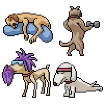 Pixel art definido cão engraçado isolado