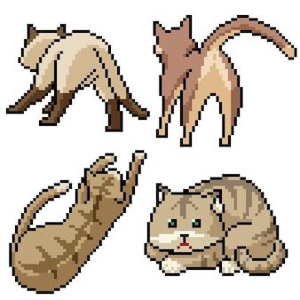 Pixel art definido com gato de rua isolado