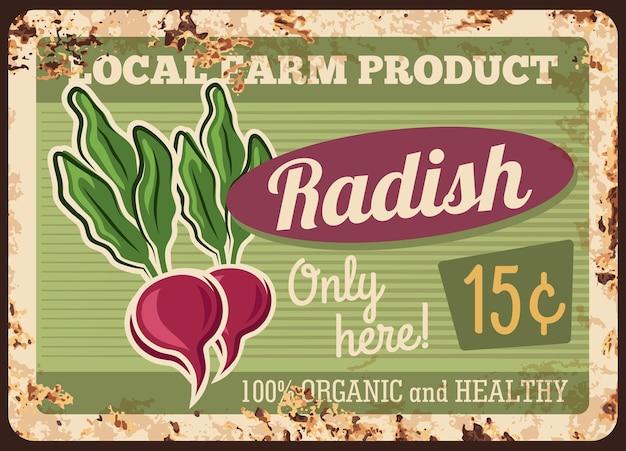 Placa de metal enferrujada de rabanete de fazenda. rabanete vermelho com folhas, raiz vegetal madura.