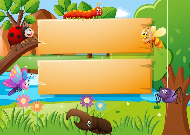 Placas de madeira e diferentes tipos de insetos
