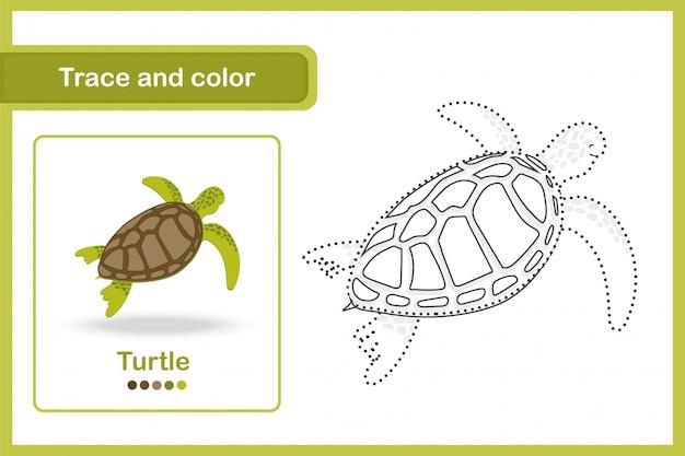 Planilha de desenho e vocabulário, rastreamento e cor: tartaruga