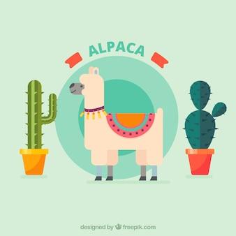 Plano de alpaca