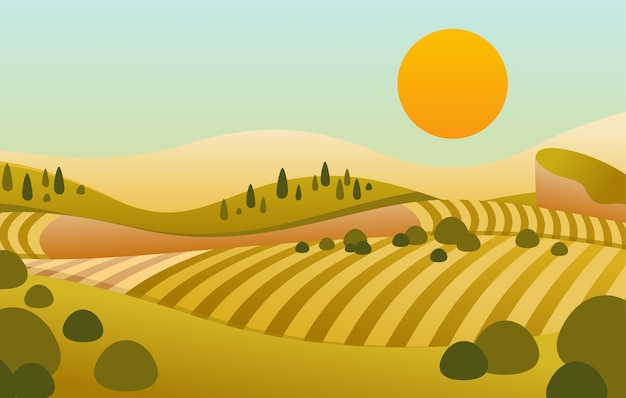 Plano de colina com vista do pôr do sol e lindo campo verde amarelado