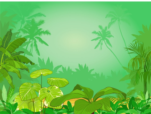 Plano de fundo da floresta tropical verde. selva com flores e plantas tropicais. ilustração