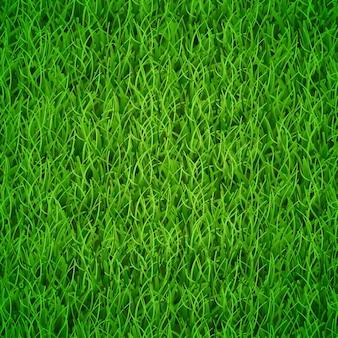 Plano de fundo de grama verde fresca, ilustração vetorial