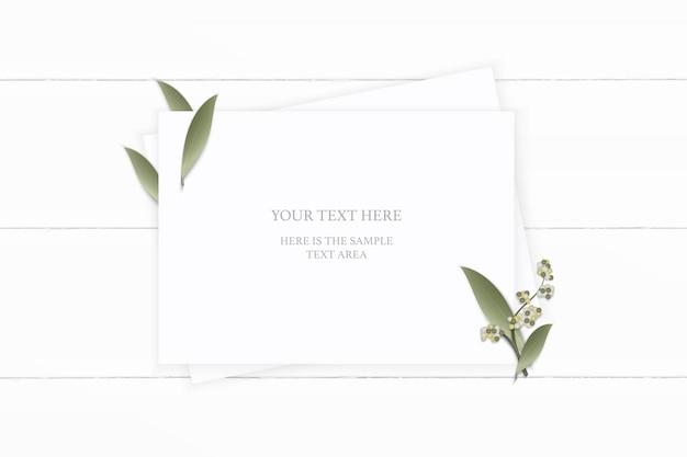 Plano leigo vista superior elegante composição branca papel planta folha flor na mesa de madeira.