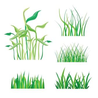 Planos de fundo do vetor isolado de grama verde